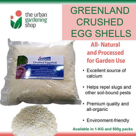 CRUSHED EGG SHELLS All-Natural Calcium-Rich Plant Nutrient