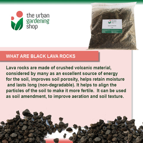 BLACK LAVA SAND / ROCKS  All-natural for Gardening Purposes