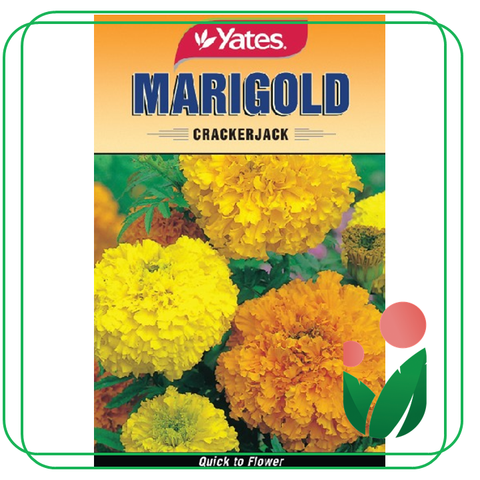 Flower Seeds by YATES and RAMGO