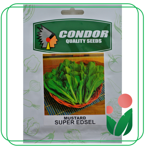 ORIENTAL LEAFY GREENS by Condor Seeds