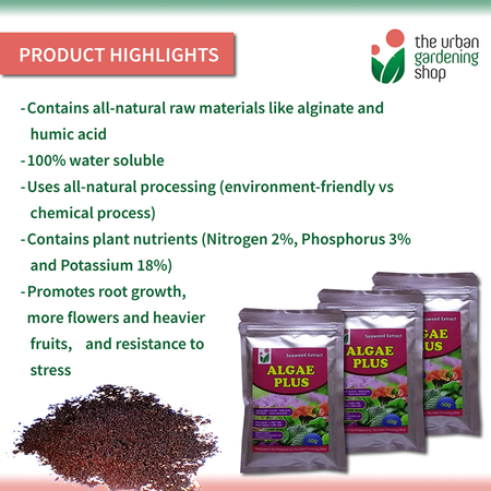 ALGAE PLUS – Seaweed Extract for Soil Conditioning and Root Promotion