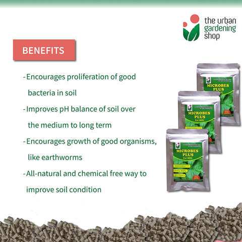 SOIL MICROBES PLUS - Contains Beneficial Micro-organisms that Help Promote Good Healthy Soil
