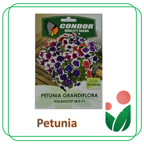 VARIOUS FLOWER SEEDS BY Condor Seeds