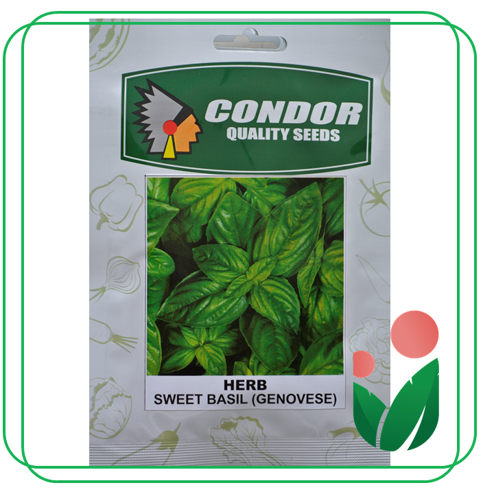 HERB SEEDS  By Condor Seeds