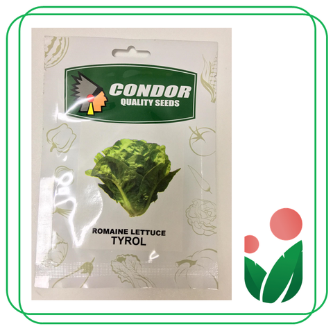 LETTUCE AND SALAD GREENS By Condor Seeds