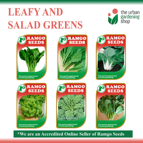LEAFY AND SALAD GREENS by Ramgo and Yates