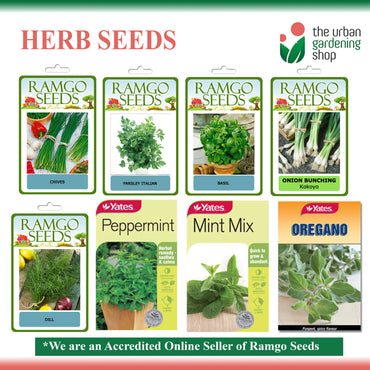 HERB SEEDS by Ramgo and Yates
