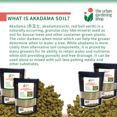 AKADAMA SOIL  Top Quality Bonsai Soil for Potted Plants Bonsai and Succulents