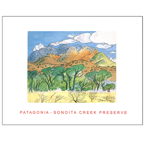 Patagonia Sonoita Creek Preserve Arizona 23