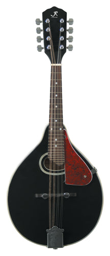 J Reynolds Black Mandolin