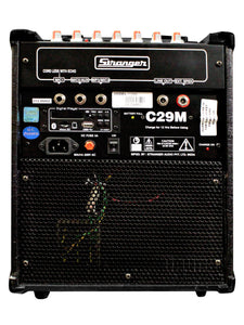 Stranger Cube C29M  Musical Amplifier