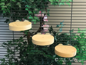 3x Circular Wood Ledges Kiln Dried Pine + Mounting Hardware