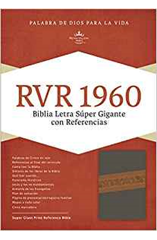 Rvr 1960 Sgp Bible, Gray/Tan Leathertouch Idx 9781462746613