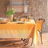 "Coated tablecloth from France Milles Oiseaux 69""x100""  (1 in stock)"