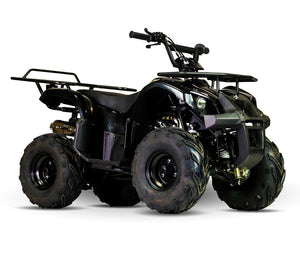 Kandi Talon ATV, 110cc Automatic with Reverse, Electric Start Speed Governor, Remote Start/Kill