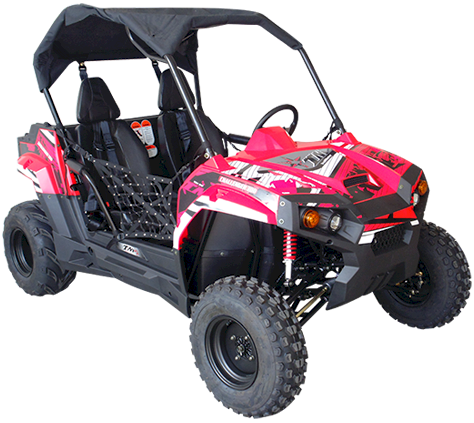 Load image into Gallery viewer, TrailMaster 200S Challenger Go Kart, Youth & Adult UTV