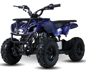 Kandi Talon ATV, 110cc Auto, Reverse, Electric Start Speed Governor, Remote Start/Kill