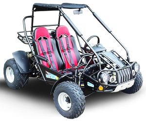 Load image into Gallery viewer, TrailMaster 300 XRS-E (EFI) Dune Buggy Go Kart