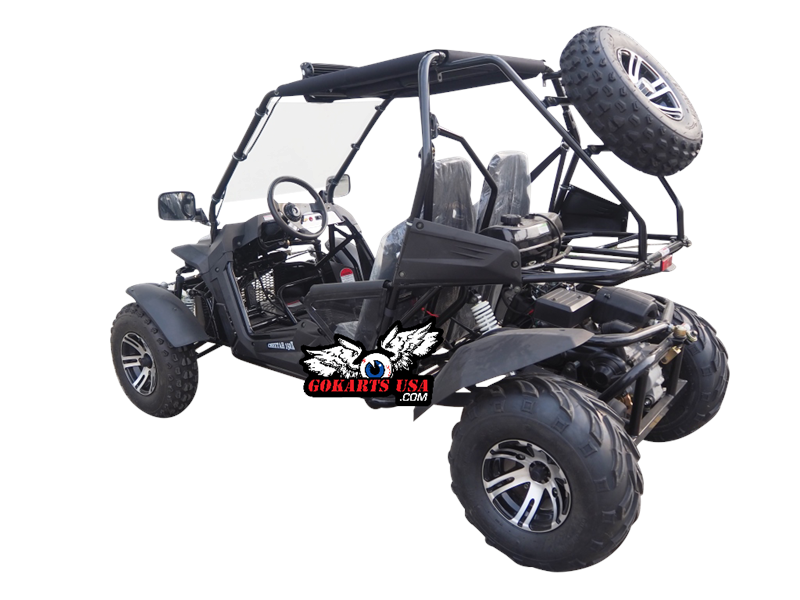 Cheetah 200EX EFI Go Kart CVT Automatic with Reverse, Alloy Wheels, Windshield