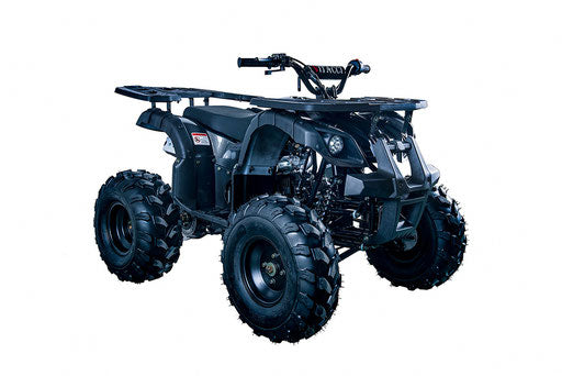 Rider-10 125 ATV, Auto with Reverse, Front Rack, Rear Rack, Deluxe front Bumper