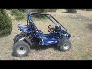 Load and play video in Gallery viewer, 300 XRS-E (EFI) Dune Buggy Go Kart, Liquid Cooled, Chain Drive