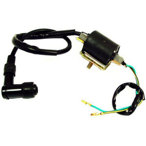 Load image into Gallery viewer, 4-Stroke Ignition Coil - 49-125cc 4-Stroke 260-19