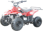 Coolster Mini 110cc ATV for Kids