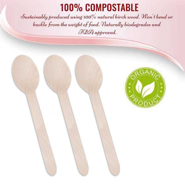 Natural Birch Eco Friendly Disposable Dinner Spoons