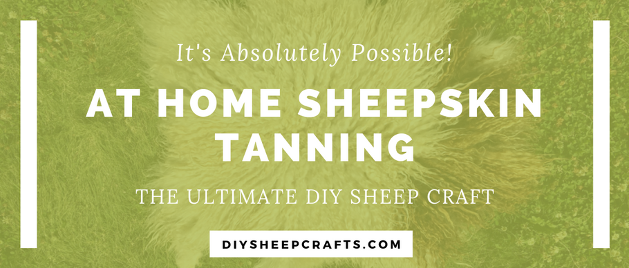 How to Tan Your Own Sheepskin | tutorial, diy, pelt, hide