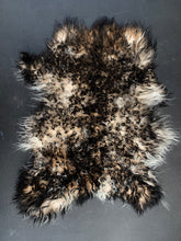 Icelandic Baby lamb Sheepskin - black gray 15 x 12 inches