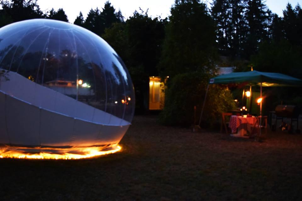 Bubble Huts - Single Room Bubble Camping Hut