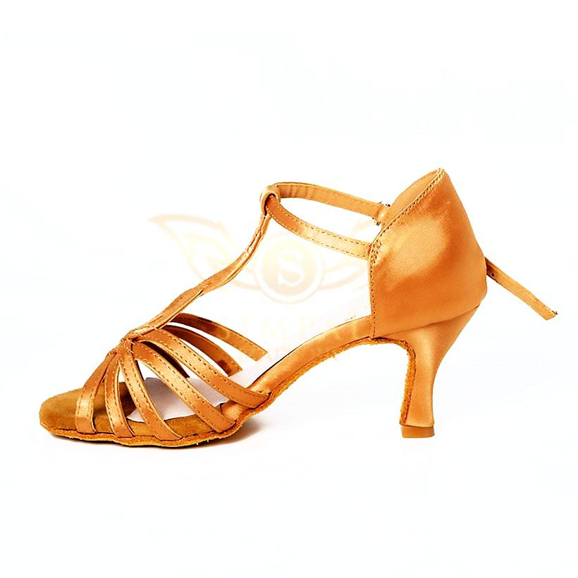 f6255a896 Latin Salsa Dance Shoes For Ladies now in Dubai, UAE Hot Sale ...