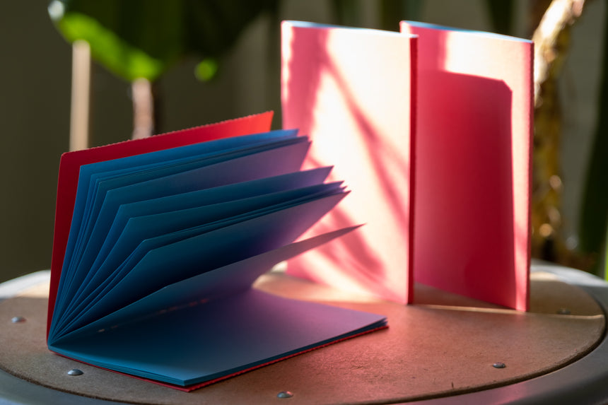 3 ColorPair Notebooks: Red + Blue