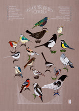 Load image into Gallery viewer, Garden Birds - Adar yr Ardd