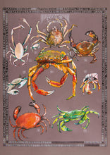 Load image into Gallery viewer, Crabs - Crancod