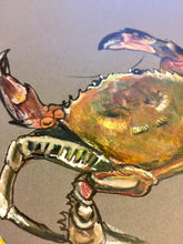 Load image into Gallery viewer, Crancod - Crabs