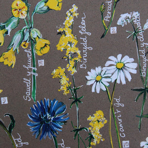 PRINTS- set of 3 -Series Wales - FFION GWYN...Autumn / Wild flowers / Mushrooms