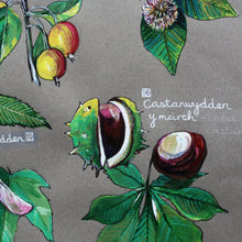 Load image into Gallery viewer, PRINTS- set of 3 -Series Wales - FFION GWYN...Autumn / Wild flowers / Mushrooms