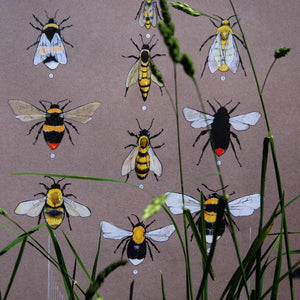"x PRINTS- set of 3 - from the ""Series Wales"" collection by FFION GWYN...Birds, Bees and Beetles"
