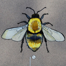 "Load image into Gallery viewer, x PRINTS- set of 3 - from the ""Series Wales"" collection by FFION GWYN...Birds, Bees and Beetles"