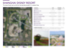 Load image into Gallery viewer, Attraction Resort Planning & Sizing Detail
