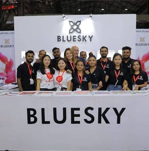 Bluesky India Team
