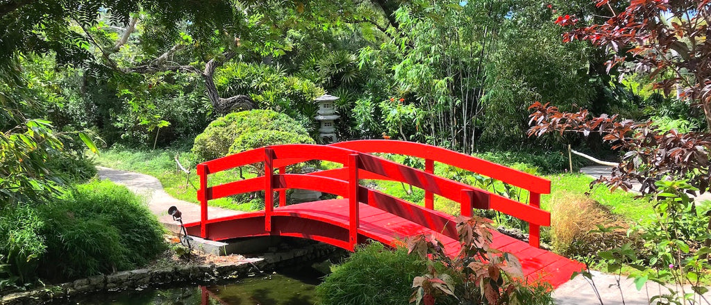 At Miami Beach Botanical Gardens, trees, grass, flowers and plantlife in the Japanese garden are complemented by a small footbridge over a koi fish pond