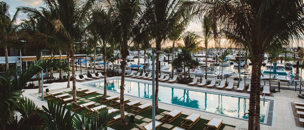 At the Perry Hotel, chaise lounges or sunbathing are spread throughout the expansive pool area which contains beautiful palm trees, against the greater backdrop of a marina full of boats