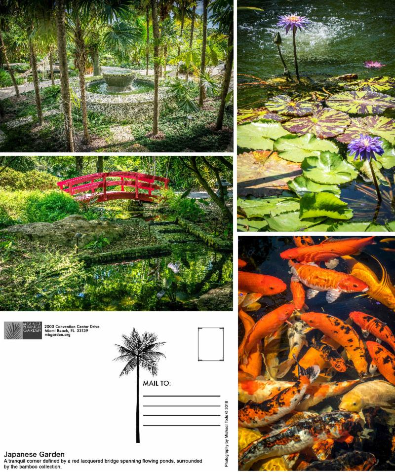 Miami Beach Botanical Garden Linen Postcards Collection