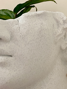 Busto Romano de pared - Planter