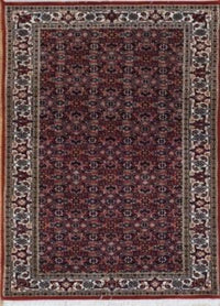 India Bijar Hand Knotted Wool 3X5