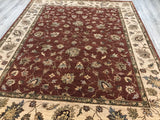 India Tuscan Hand Knotted Wool 8X10
