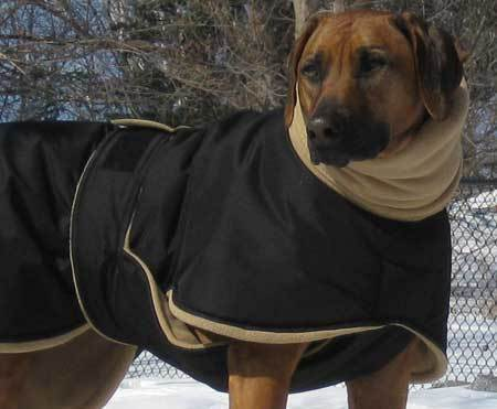 Large Space Extra Large Dog Coats