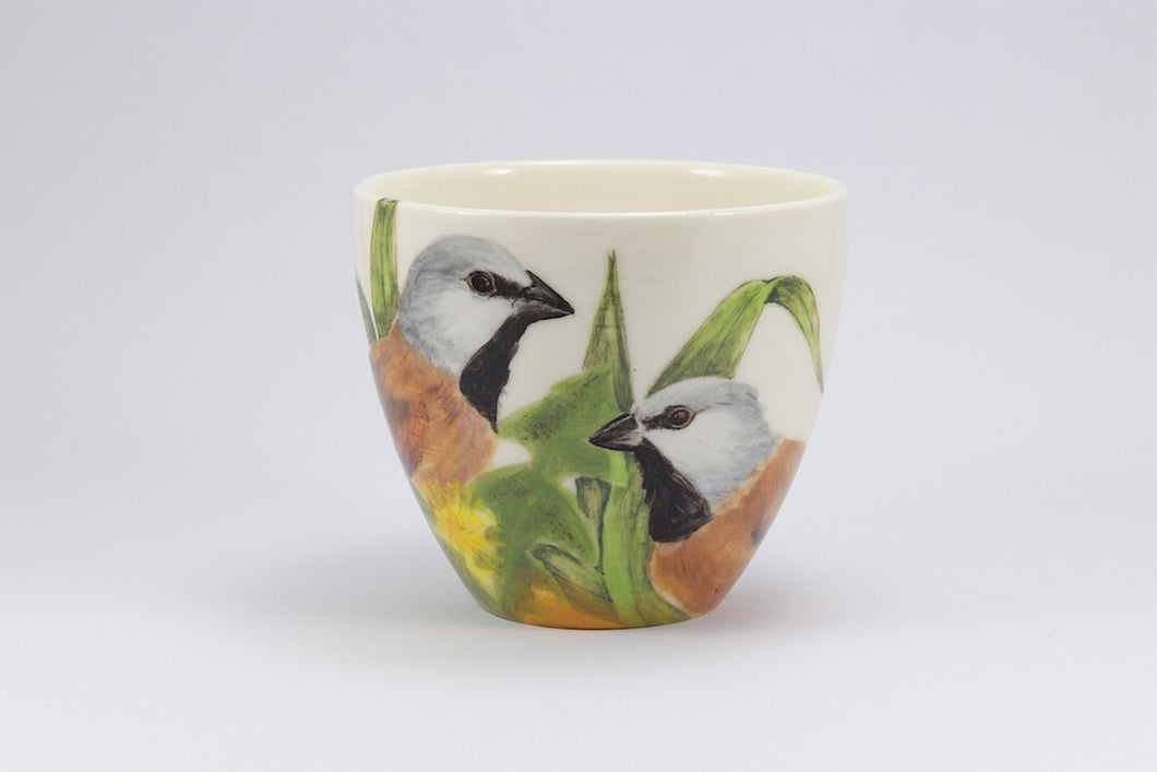 Black Throated Finch Cup